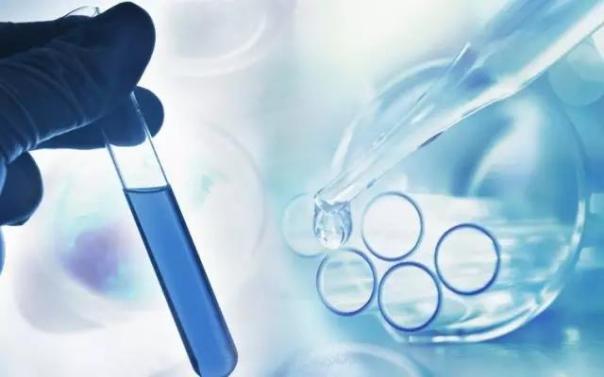 肾癌的免疫组合治疗或成为治疗新标准