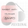 兔抗人IgG(Fc)