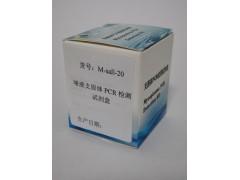 唾液支原体PCR检测试剂盒