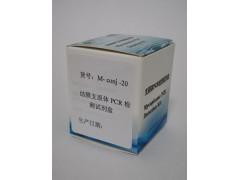 结膜支原体PCR检测试剂盒