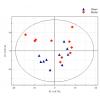 主成分分析(PCA)