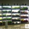 北京鸿商祺供应组培架/组培设备/植物培养架/质量有保证