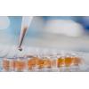 激酶谱测试