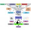重磅首推!| 百泰派克隆重推出多组学整合分析服务