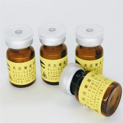 ATCC 6538 金黄色葡萄球菌
