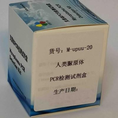 人类脲原体PCR检测试剂盒