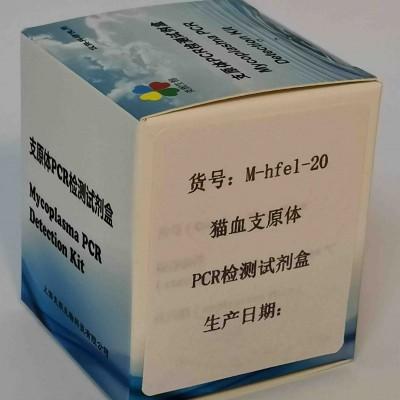 猫血支原体PCR检测试剂盒