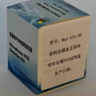 染料法猫血支原体实时定量PCR试剂盒