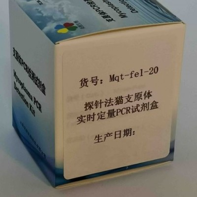 探针法猫支原体实时定量PCR试剂盒