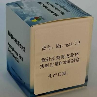探针法鸡毒支原体实时定量PCR试剂盒