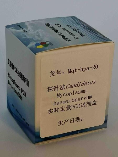 探针法M. haematoparvum实时定量PCR试剂盒
