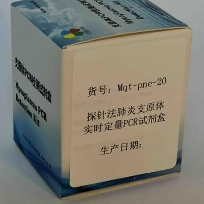 探针法肺炎支原体实时定量PCR试剂盒