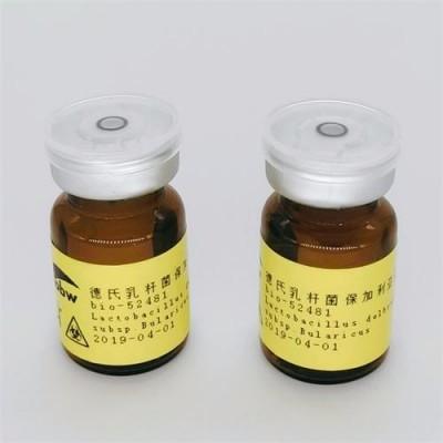 Rhizobium wuzhounese
