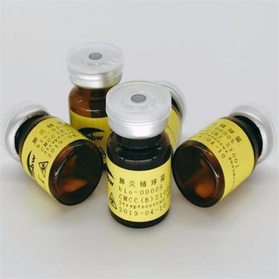 Clostridium leptum